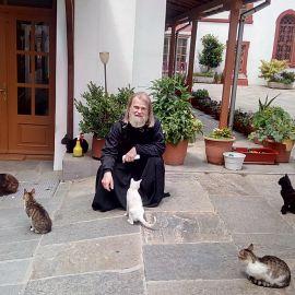 """Отец Виктор и хвостатые """"насельники"""" одного из монастырей Фотоотчет из поездки на Афон 2017"""