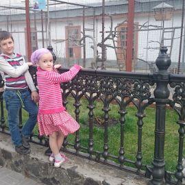 Маленькие паломники в Святогорской лавре полюбовались пернатыми насельниками Паломническая поездка в Святогорскую Лавру. 9-10 апреля 2016 г.